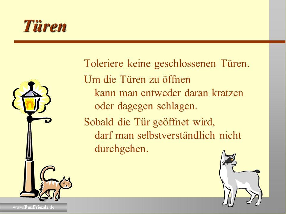 www.FunFriends.de Gäste-Beispiel Eine weiße Katze sollte sich immer auf dunkle Schöße setzen. Begleite Gäste immer zur Toilette und beobachte, ob sie