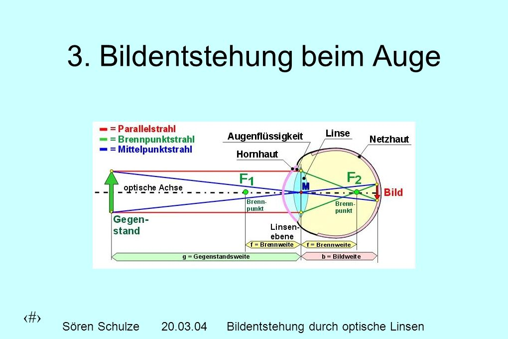 5 Sören Schulze20.03.04Bildentstehung durch optische Linsen 3. Bildentstehung beim Auge