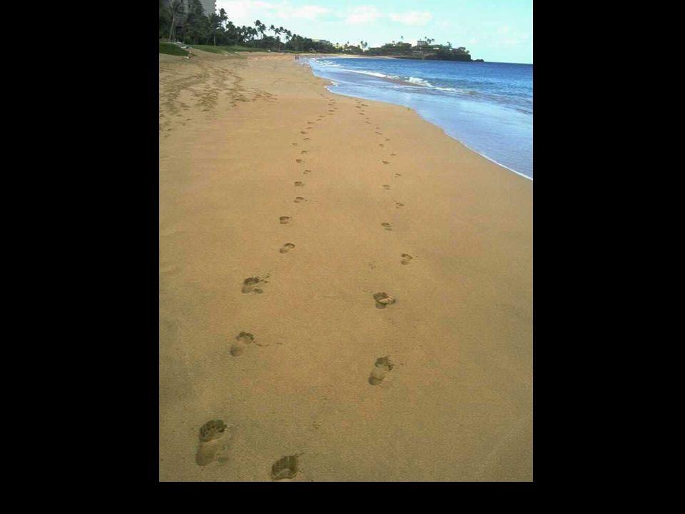 Und jedes mal sah ich zwei Fußspuren im Sand, meine eigene und die meines Herrn.