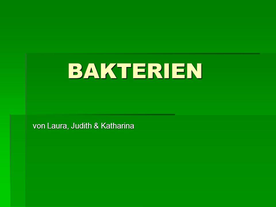 BAKTERIEN BAKTERIEN von Laura, Judith & Katharina