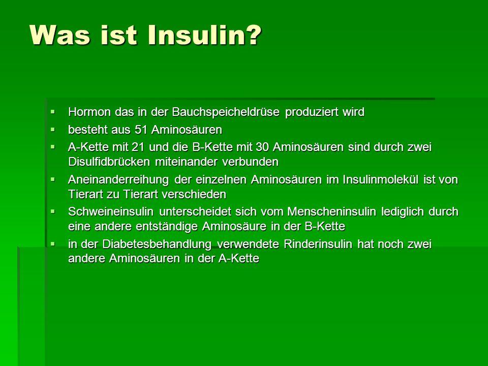 Was ist Insulin? Hormon das in der Bauchspeicheldrüse produziert wird Hormon das in der Bauchspeicheldrüse produziert wird besteht aus 51 Aminosäuren