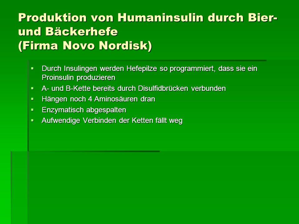 Produktion von Humaninsulin durch Bier- und Bäckerhefe (Firma Novo Nordisk) Durch Insulingen werden Hefepilze so programmiert, dass sie ein Proinsulin