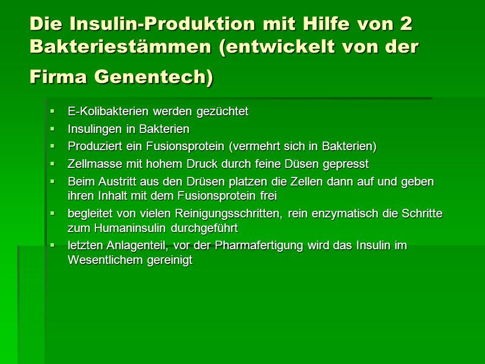 Die Insulin-Produktion mit Hilfe von 2 Bakteriestämmen (entwickelt von der Firma Genentech) E-Kolibakterien werden gezüchtet E-Kolibakterien werden ge