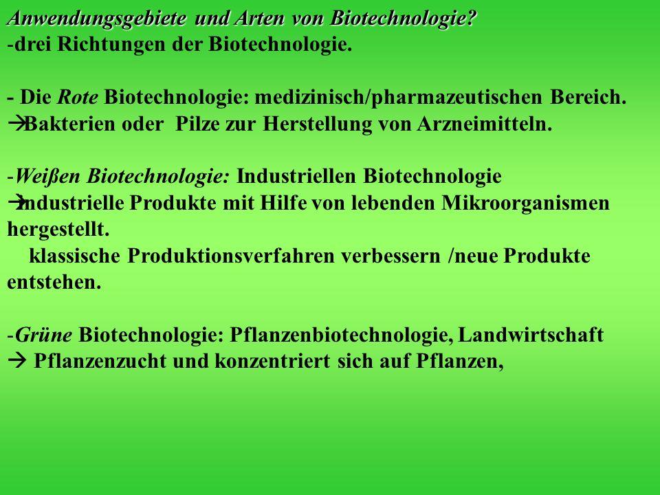Anwendungsgebiete und Arten von Biotechnologie? -drei Richtungen der Biotechnologie. - Die Rote Biotechnologie: medizinisch/pharmazeutischen Bereich.