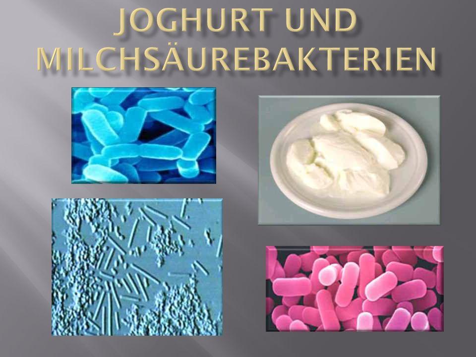Die Herstellung von Joghurt erfolgt aus der Säuerung und Dicklegung von Milch.