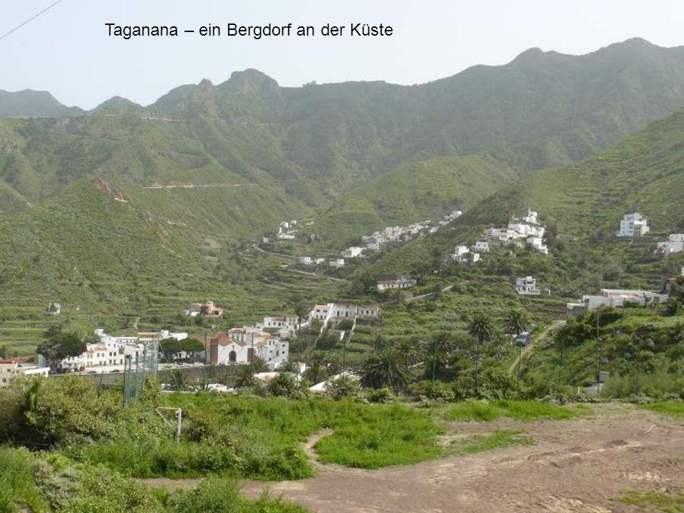 Taganana – ein Bergdorf an der Küste