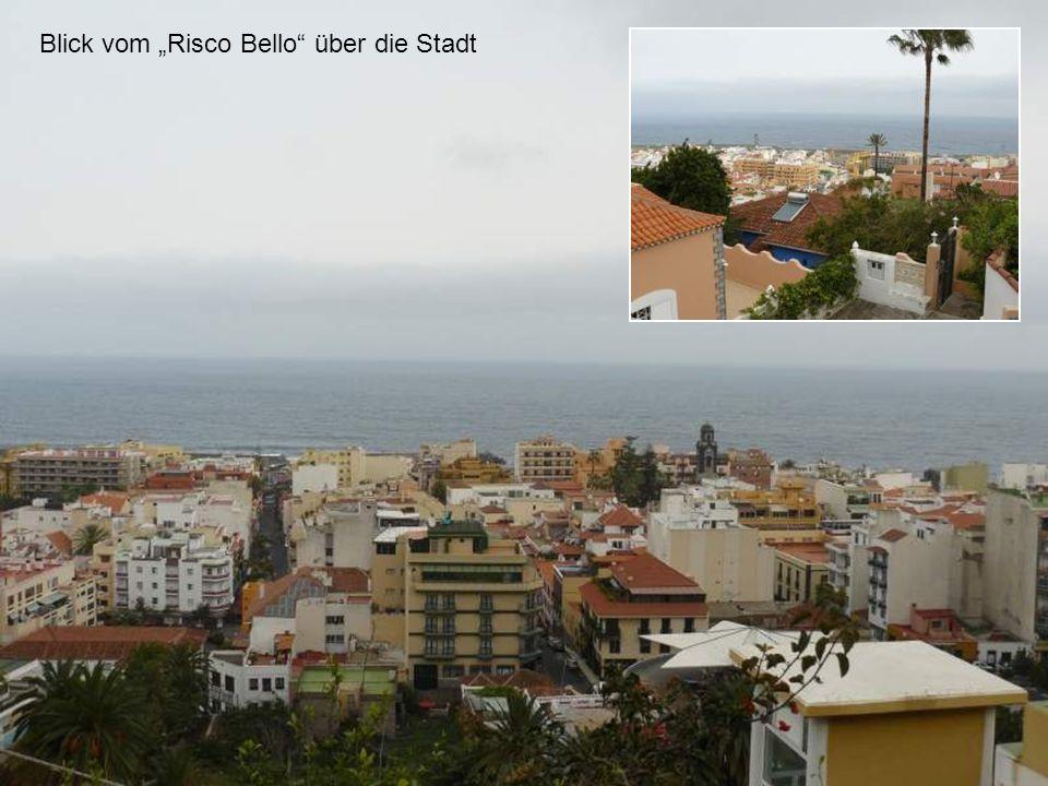 Blick vom Risco Bello über die Stadt