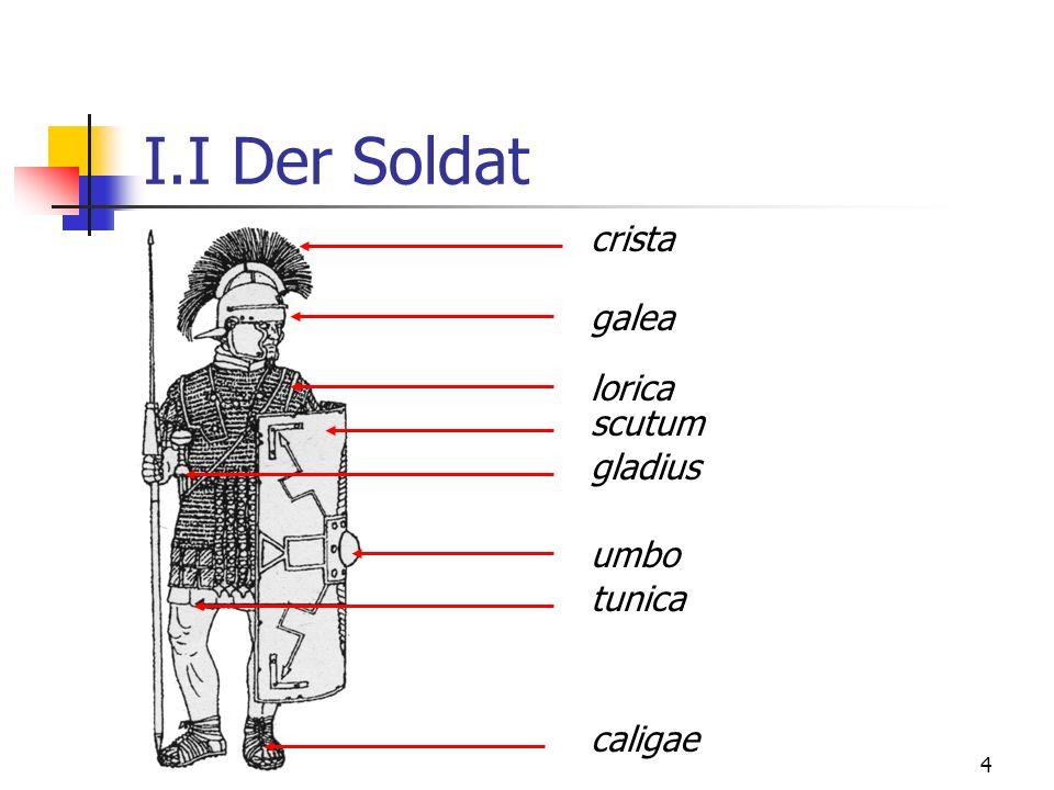 4 I.I Der Soldat crista galea lorica scutum gladius umbo tunica caligae