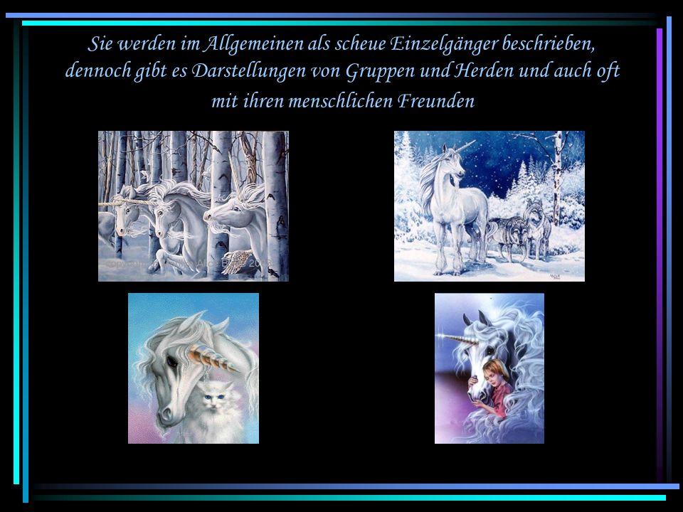 Im Allgemeinen wird das Einhorn als sehr graziles, schlankes weißes Pferd mit kleinem Kopf beschrieben und dargestellt. Aber ich sehe sie nur als wund