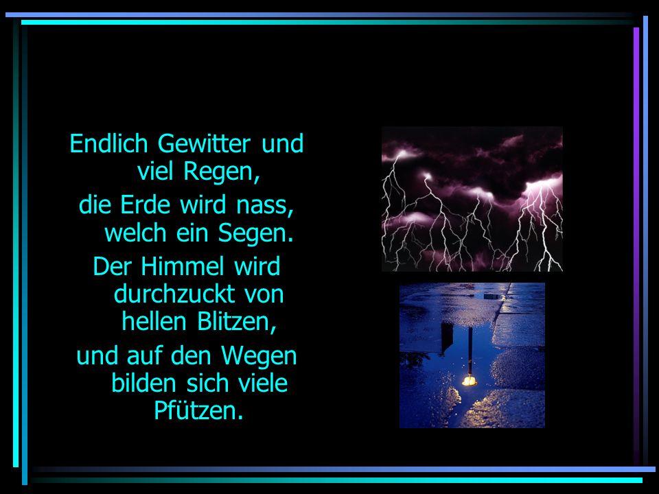 G E W I T T E R Ein Gedicht von Micha, alias spikerider