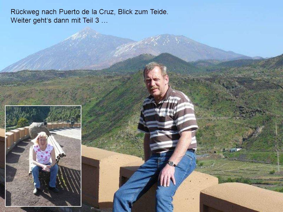 Rückweg nach Puerto de la Cruz, Blick zum Teide. Weiter gehts dann mit Teil 3 …