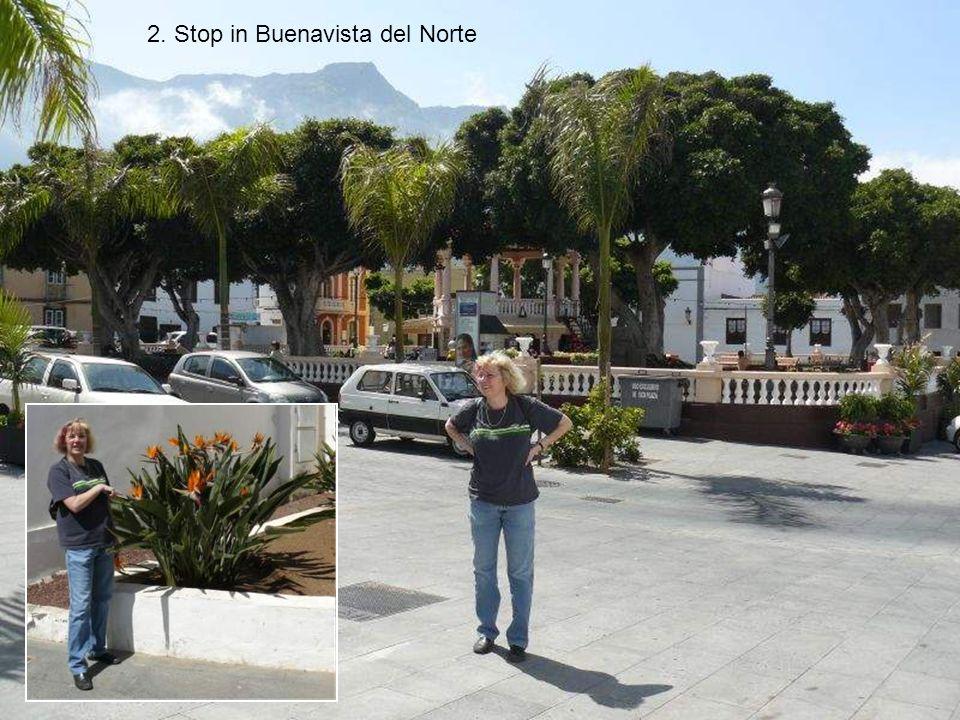 2. Stop in Buenavista del Norte