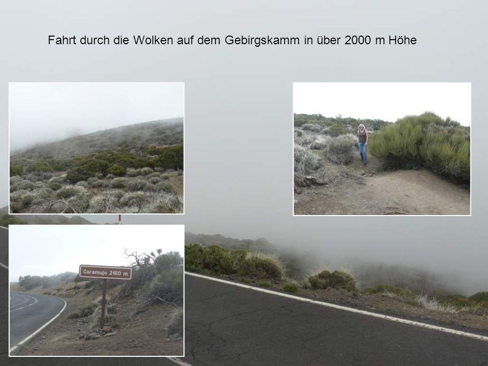 Fahrt durch die Wolken auf dem Gebirgskamm in über 2000 m Höhe