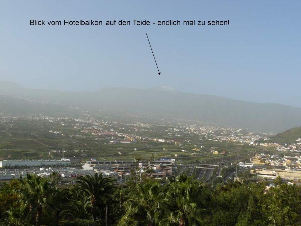 Blick vom Hotelbalkon auf den Teide - endlich mal zu sehen!
