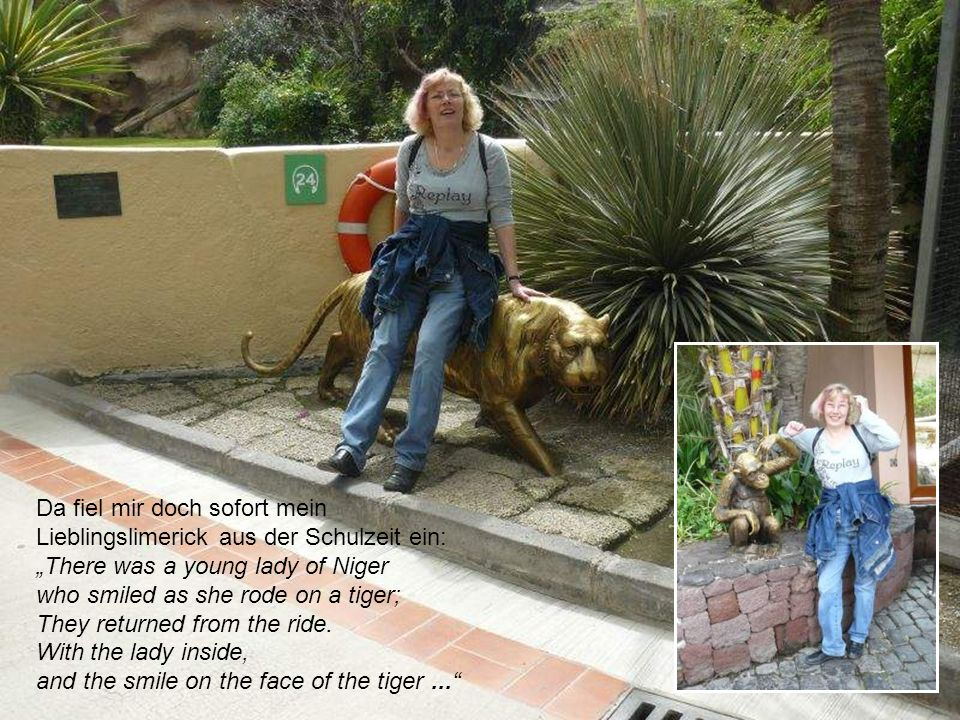 Da fiel mir doch sofort mein Lieblingslimerick aus der Schulzeit ein: There was a young lady of Niger who smiled as she rode on a tiger; They returned