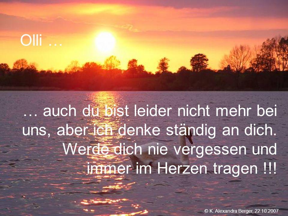 22.10.2007, 01:02 Created by K. Alexandra Berger Olli … … auch du bist leider nicht mehr bei uns, aber ich denke ständig an dich. Werde dich nie verge