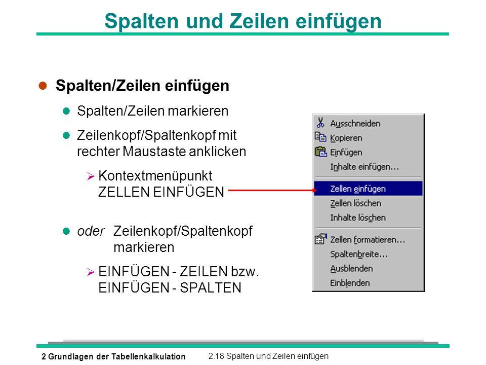 2 Grundlagen der Tabellenkalkulation2.18 Spalten und Zeilen einfügen Spalten und Zeilen einfügen l Spalten/Zeilen einfügen l Spalten/Zeilen markieren
