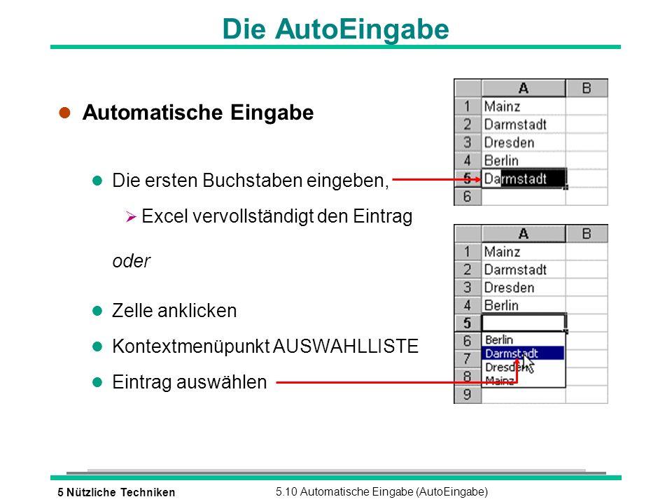 5 Nützliche Techniken5.10 Automatische Eingabe (AutoEingabe) Die AutoEingabe l Automatische Eingabe l Die ersten Buchstaben eingeben, Excel vervollständigt den Eintrag oder l Zelle anklicken l Kontextmenüpunkt AUSWAHLLISTE l Eintrag auswählen