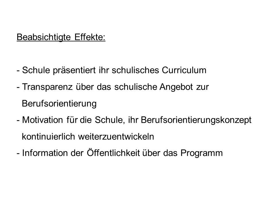 Beabsichtigte Effekte: - Schule präsentiert ihr schulisches Curriculum - Transparenz über das schulische Angebot zur Berufsorientierung - Motivation f