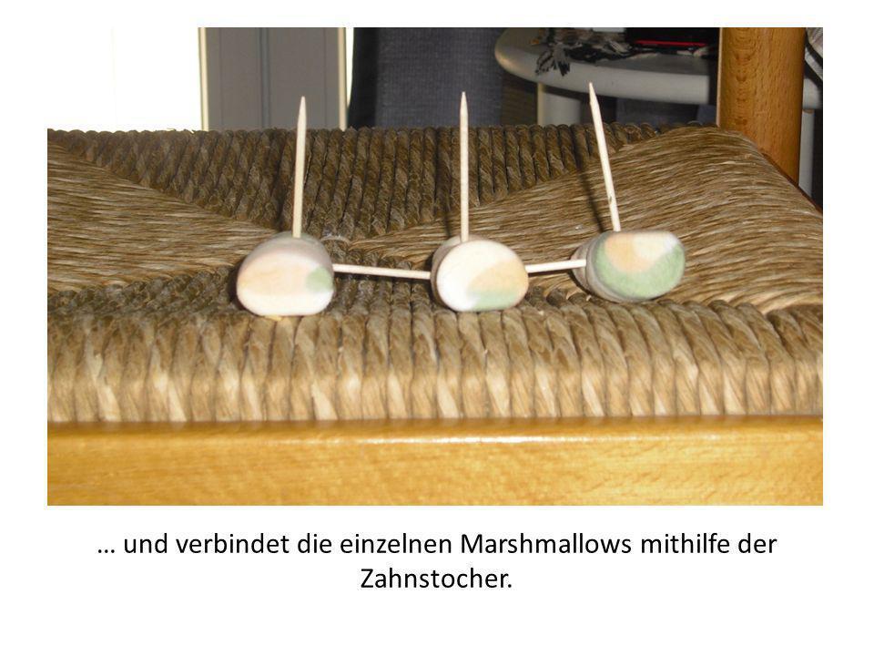 … und verbindet die einzelnen Marshmallows mithilfe der Zahnstocher.