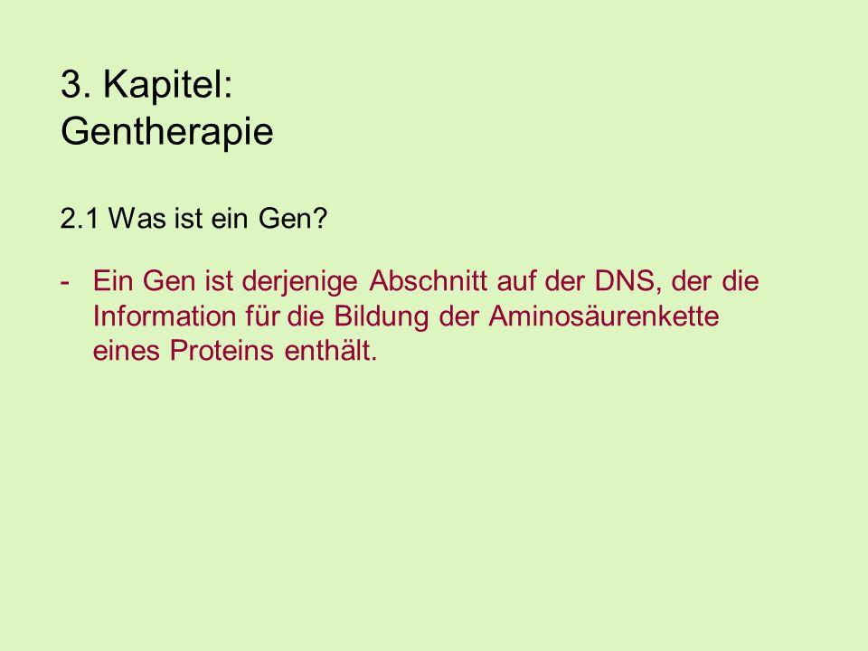 3.Kapitel: Gentherapie 2.1 Was ist ein Gen.