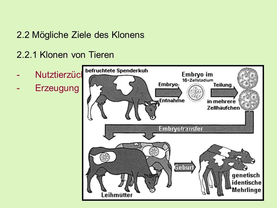 2.2 Mögliche Ziele des Klonens 2.2.1 Klonen von Tieren -Nutztierzüchtung -Erzeugung transgener Tiere