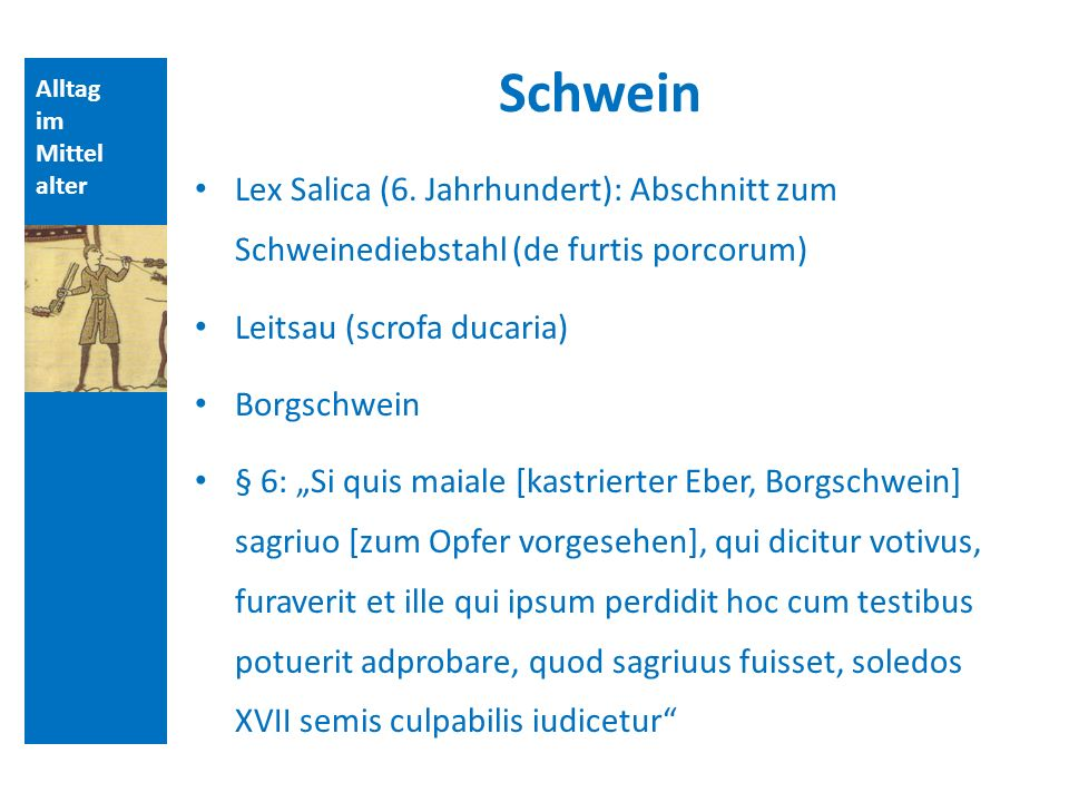 Alltag im Mittel alter Schwein Lex Salica (6.