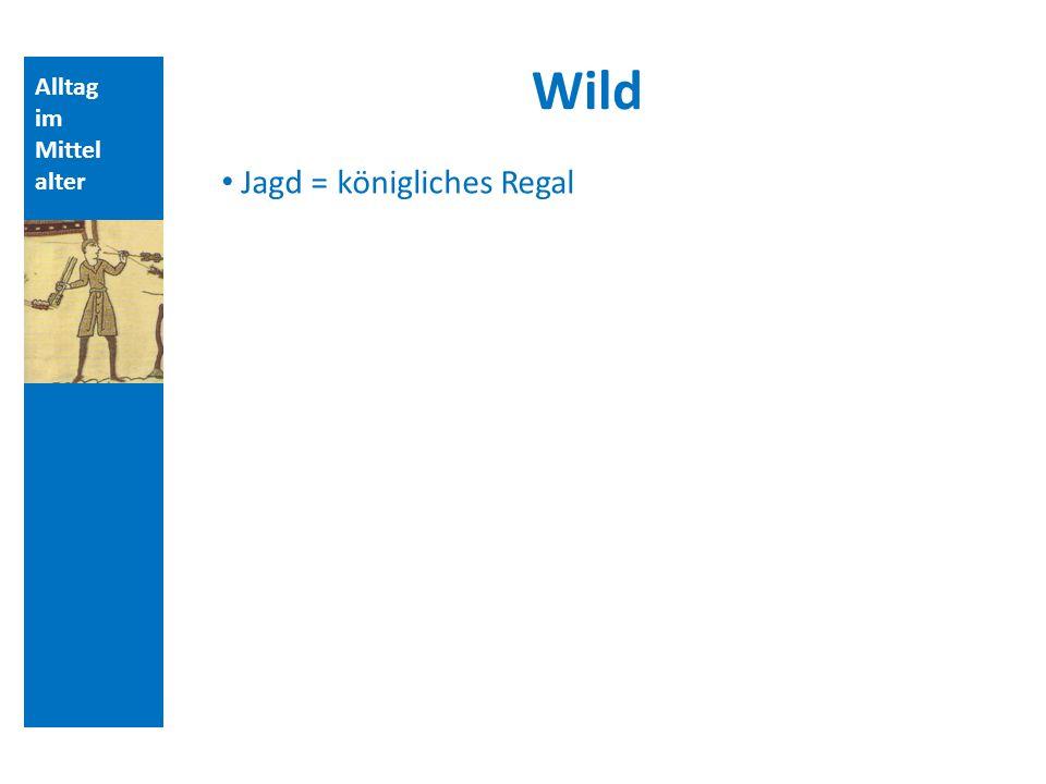 Alltag im Mittel alter Wild Jagd = königliches Regal