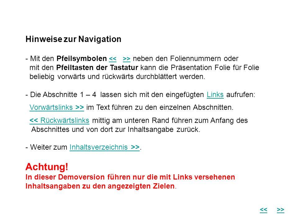 Hinweise zur Navigation - Mit den Pfeilsymbolen > neben den Foliennummern oder mit den Pfeiltasten der Tastatur kann die Präsentation Folie für Folie