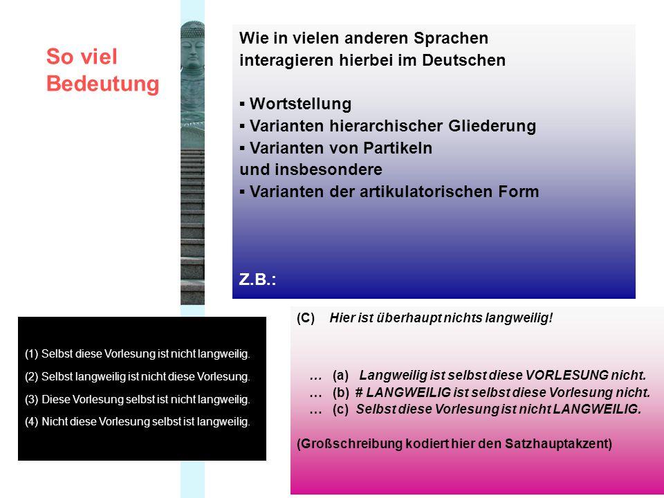 Wie in vielen anderen Sprachen interagieren hierbei im Deutschen Wortstellung Varianten hierarchischer Gliederung Varianten von Partikeln und insbesondere Varianten der artikulatorischen Form Z.B.: So viel Bedeutung (1) Selbst diese Vorlesung ist nicht langweilig.