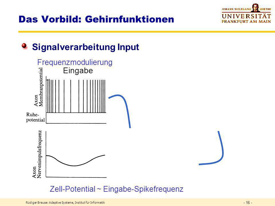 Rüdiger Brause: Adaptive Systeme, Institut für Informatik - 15 - Spikes Das Vorbild: Gehirnfunktionen Signalverarbeitung Output
