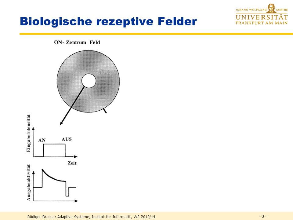 - 2 - Lernen in RBF-Netzen Approximation & Klassifikation mit RBF Anwendung RBF-Netze Rüdiger Brause: Adaptive Systeme, Institut für Informatik, WS 20