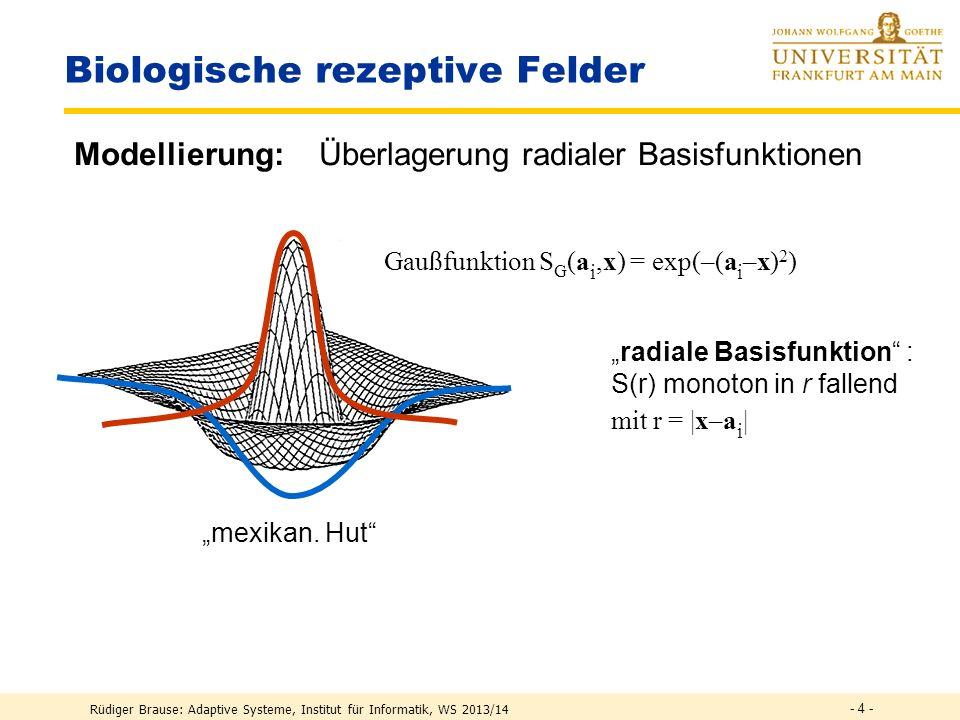 - 3 - Biologische rezeptive Felder Rüdiger Brause: Adaptive Systeme, Institut für Informatik, WS 2013/14