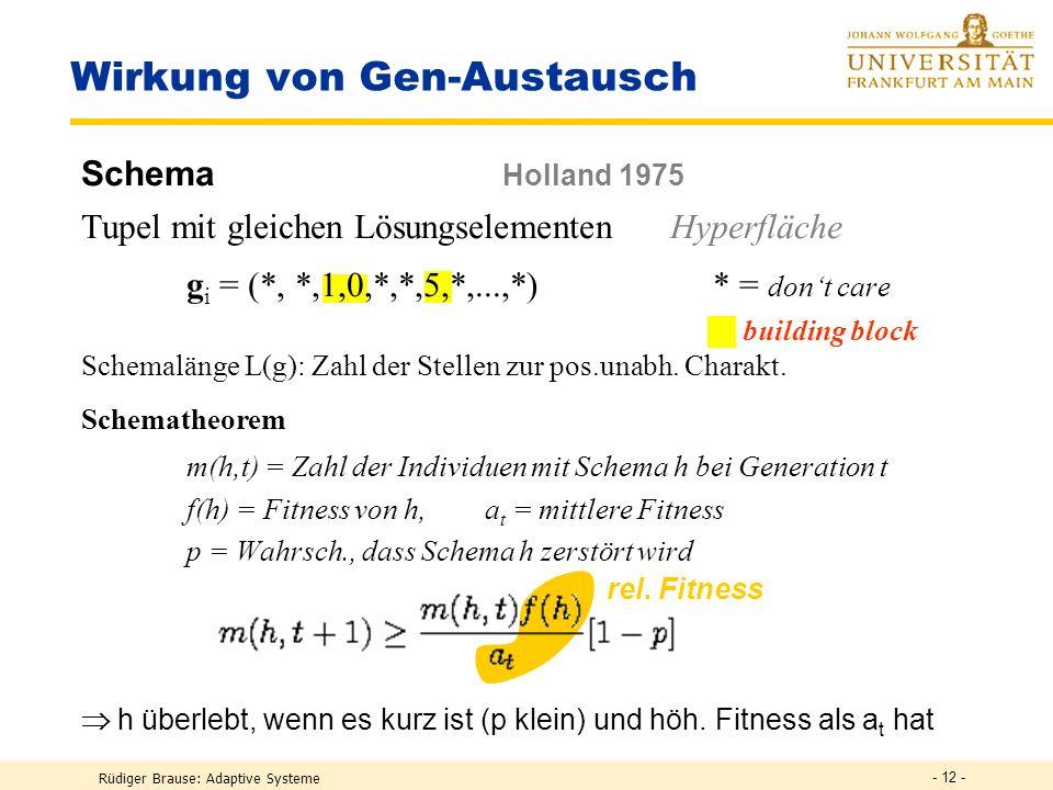 Rüdiger Brause: Adaptive Systeme - 11 - Beispiel Schmetterling Evolution eines binären Schmetterlings (Rechenberg 1973) Genotyp g = (g 1,...,g n ) mit