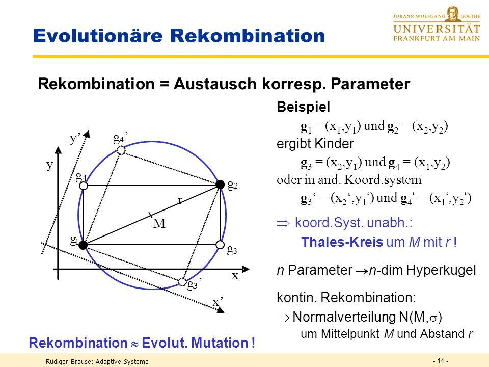 Rüdiger Brause: Adaptive Systeme - 13 - Wirkung genetischer Operatoren Idee: Kombination guter Gene verbessert eine Lösung Gen-Rekombination ist nur s