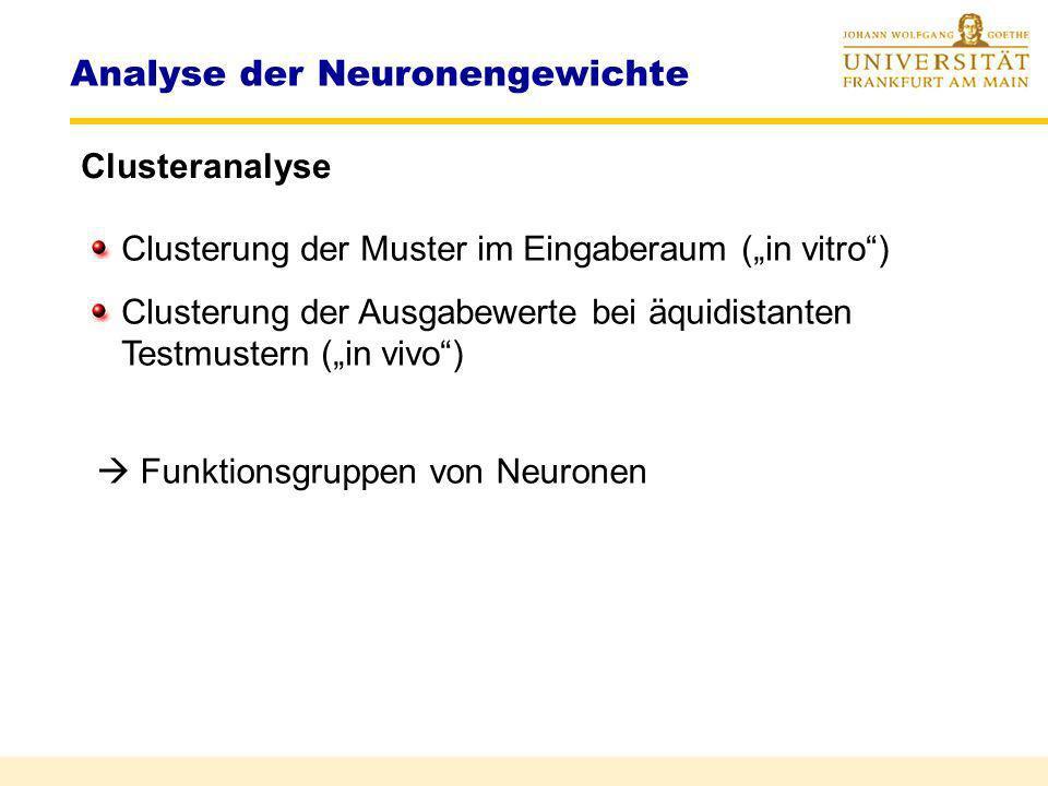 Analyse der Neuronengewichte Clusteranalyse w 2 w 1 P 1 P 2 P 3 P 4 P 5 P 6 P 7 P 8 a 1 a 3 a 2 d(x,Nachbar) < d N gleicher Cluster P 1 P 3 P 2 P 4 P