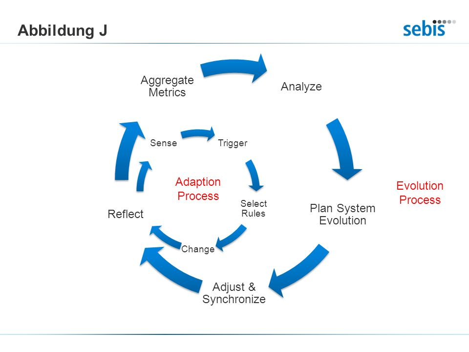 Abbildung J Adaption Process Evolution Process