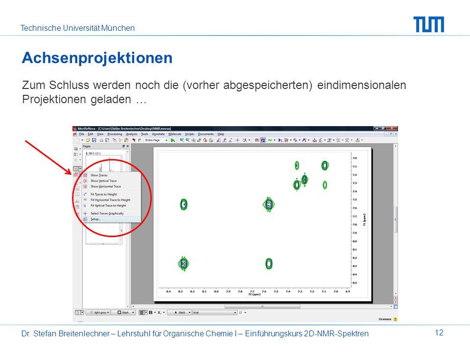 Technische Universität München Dr. Stefan Breitenlechner – Lehrstuhl für Organische Chemie I – Einführungskurs 2D-NMR-Spektren 12 Achsenprojektionen Z