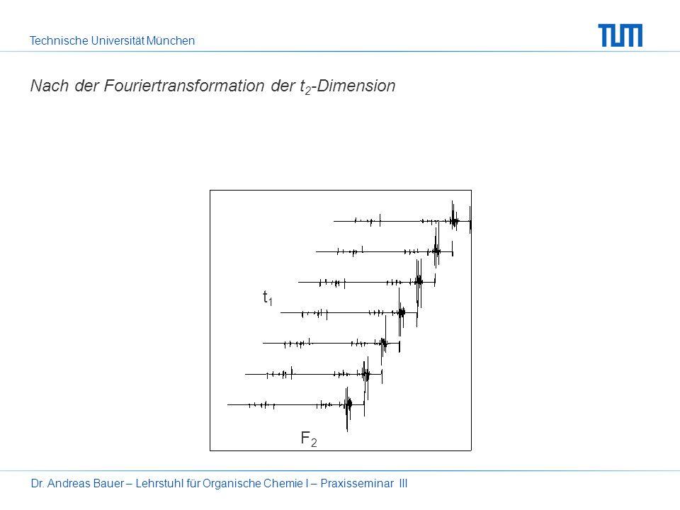 Technische Universität München Dr. Andreas Bauer – Lehrstuhl für Organische Chemie I – Praxisseminar III14 Das 2D-FT-NMR-Experiment – z. B. H-H-COSY 9
