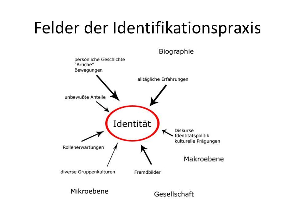 Felder der Identifikationspraxis