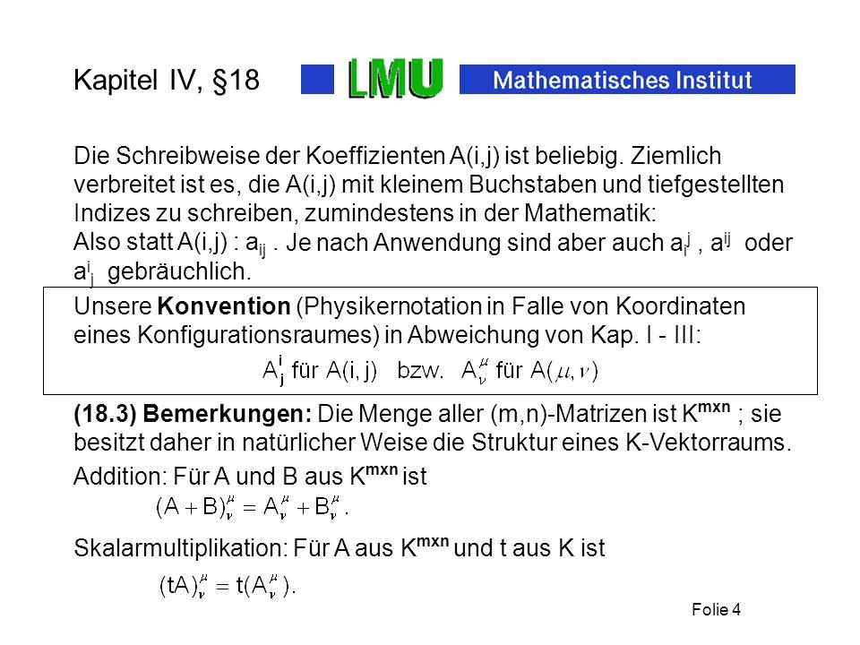 Folie 4 Kapitel IV, §18 Die Schreibweise der Koeffizienten A(i,j) ist beliebig.