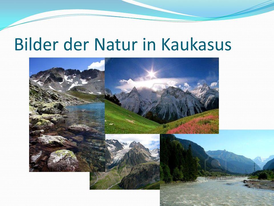 Bilder der Natur in Kaukasus