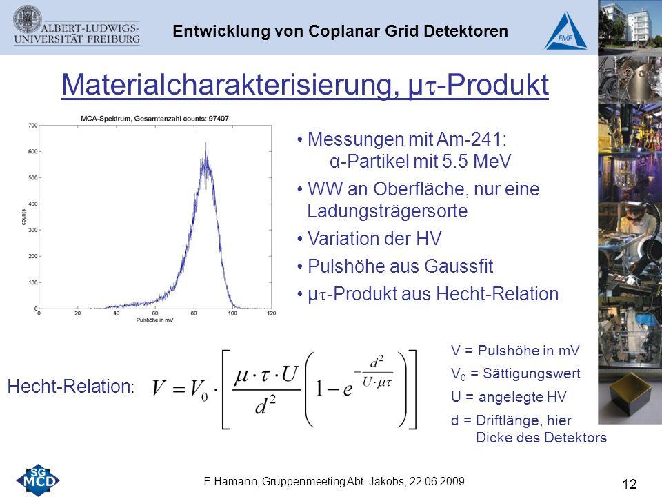 12 E.Hamann, Gruppenmeeting Abt.