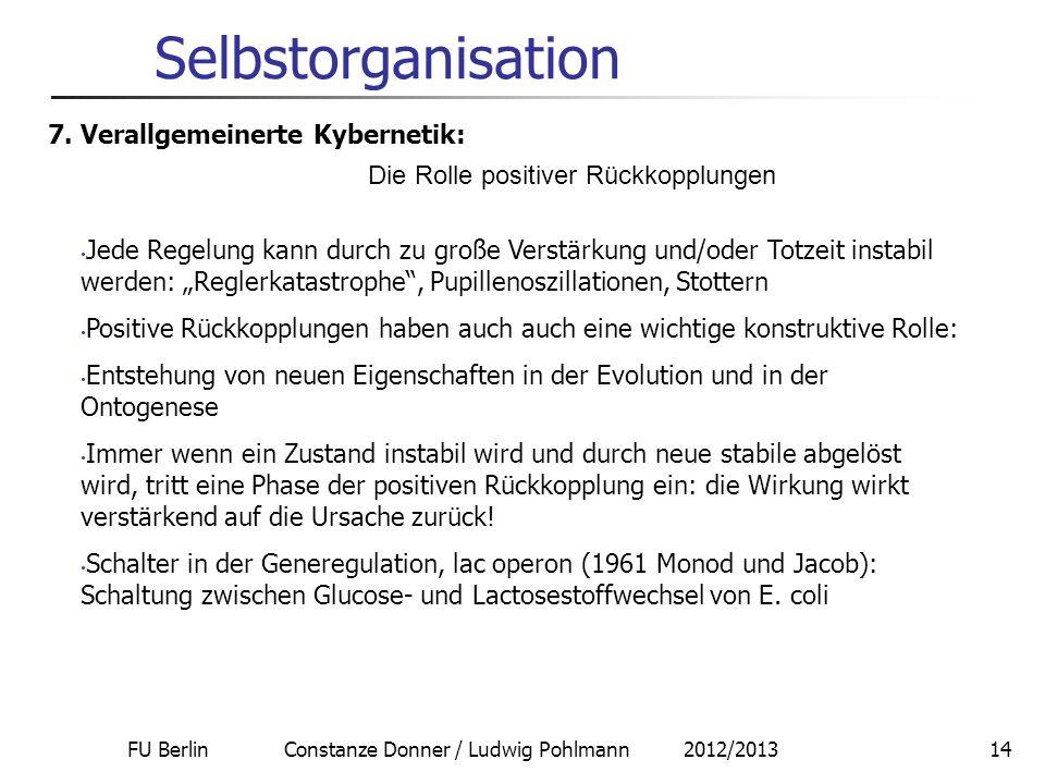 FU Berlin Constanze Donner / Ludwig Pohlmann 2012/201314 Selbstorganisation 7. Verallgemeinerte Kybernetik: Die Rolle positiver Rückkopplungen Jede Re