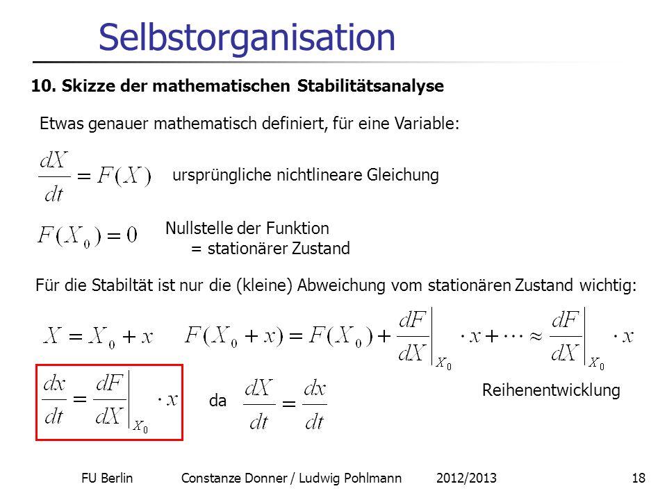 FU Berlin Constanze Donner / Ludwig Pohlmann 2012/201318 Selbstorganisation 10. Skizze der mathematischen Stabilitätsanalyse Etwas genauer mathematisc