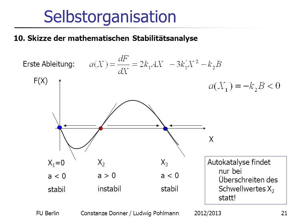 FU Berlin Constanze Donner / Ludwig Pohlmann 2012/201321 Selbstorganisation 10. Skizze der mathematischen Stabilitätsanalyse Erste Ableitung: F(X) X X