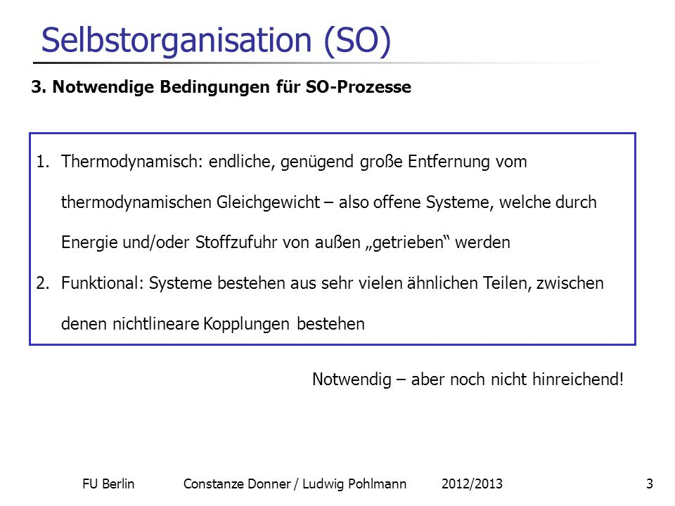FU Berlin Constanze Donner / Ludwig Pohlmann 2012/20134 Selbstorganisation (SO) 4.