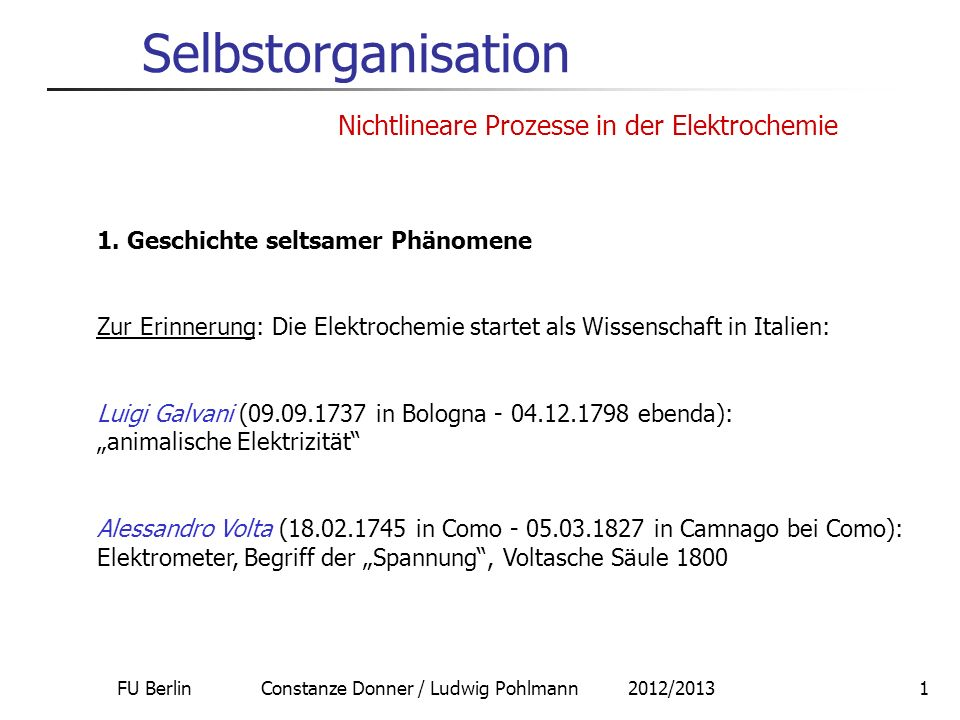 FU Berlin Constanze Donner / Ludwig Pohlmann 2012/20131 Selbstorganisation Nichtlineare Prozesse in der Elektrochemie 1.