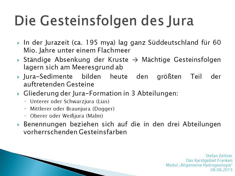 In der Jurazeit (ca. 195 mya) lag ganz Süddeutschland für 60 Mio. Jahre unter einem Flachmeer Ständige Absenkung der Kruste Mächtige Gesteinsfolgen la