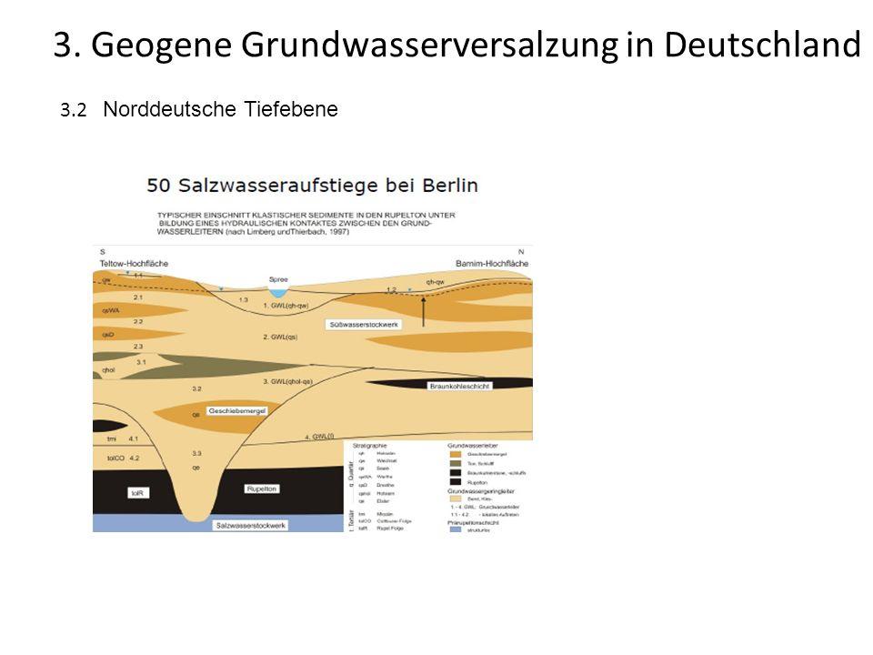 3.2 Norddeutsche Tiefebene 3. Geogene Grundwasserversalzung in Deutschland